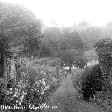 Edgehill.  Upton House, gardens