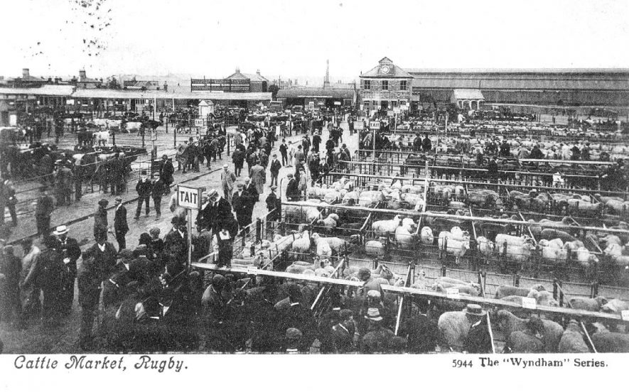 Market day at Rugby Cattle Market in the early 1900s    IMAGE LOCATION: (Warwickshire County Record Office)