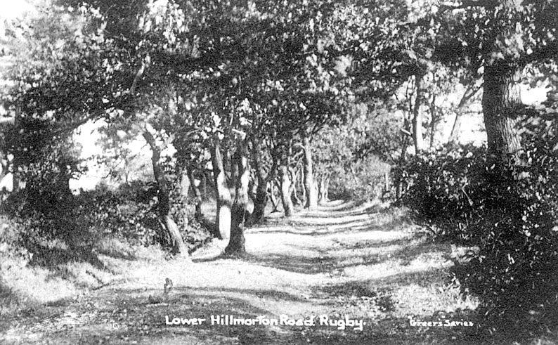 Tree lined Lower Hillmorton Road, Rugby.  Circa 1910 |  IMAGE LOCATION: (Warwickshire County Record Office) IMAGE DATE: (c.1910)