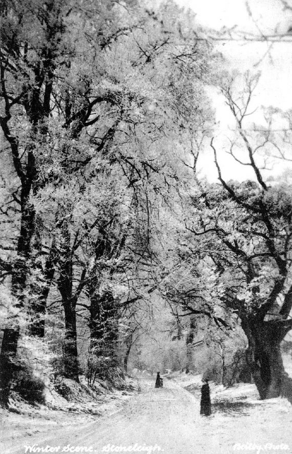 Country lane with trees in winter and two female figures, Stoneleigh.  1900s |  IMAGE LOCATION: (Warwickshire County Record Office)