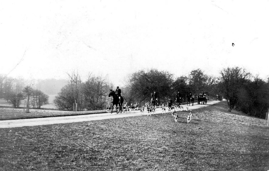 Riders, horses and hounds on road surrounded by countryside,  possibly the drive to Stoneleigh Abbey.  Horse-drawn carriage in distance.  1900s |  IMAGE LOCATION: (Warwickshire County Record Office)
