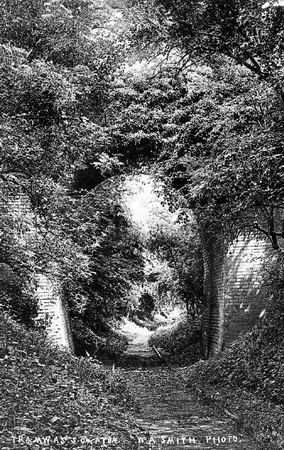 Track of old tramway from Stratford to Moreton passing under a bridge, Stratford upon Avon.  Overgrown and disused.  1900s    IMAGE LOCATION: (Warwickshire County Record Office)