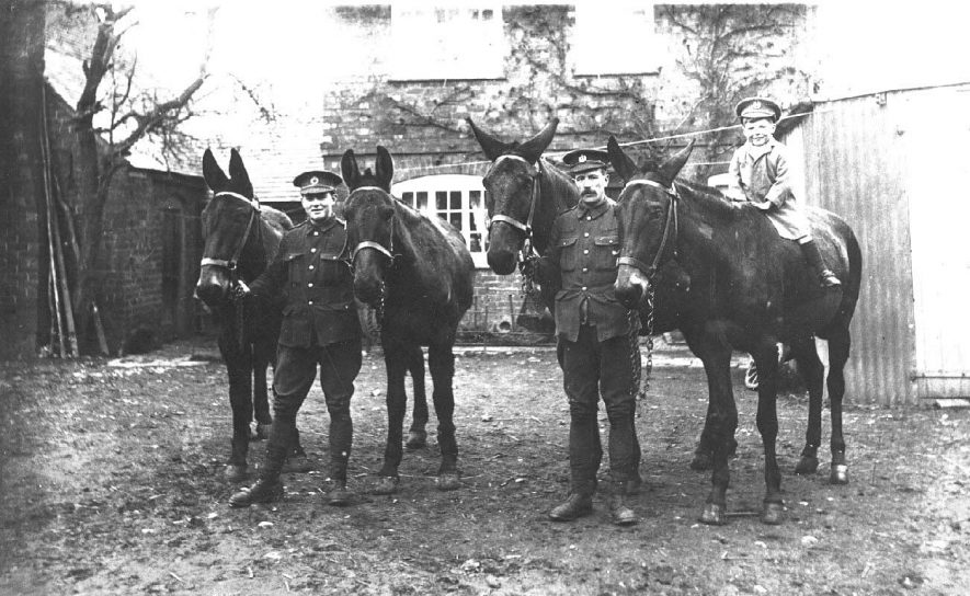 Two soldiers (Greaves and Morris snr.) with four mules, a small boy on the back of one of them in front of a house, Long Itchington.  1917 |  IMAGE LOCATION: (Warwickshire County Record Office) SCAN DATE: (249/97) PEOPLE IN PHOTO: Morris, Snr, Morris as a surname, Greaves as a surname, Greaves