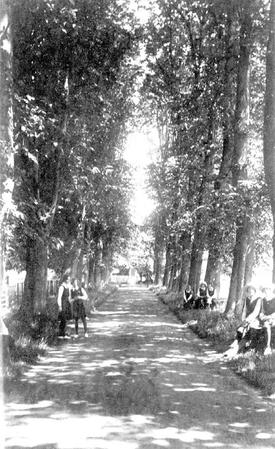 Schoolgirls in uniform sitting and standing in The Lime Walk, The Priory, Princethorpe.  1930s |  IMAGE LOCATION: (Warwickshire County Record Office)