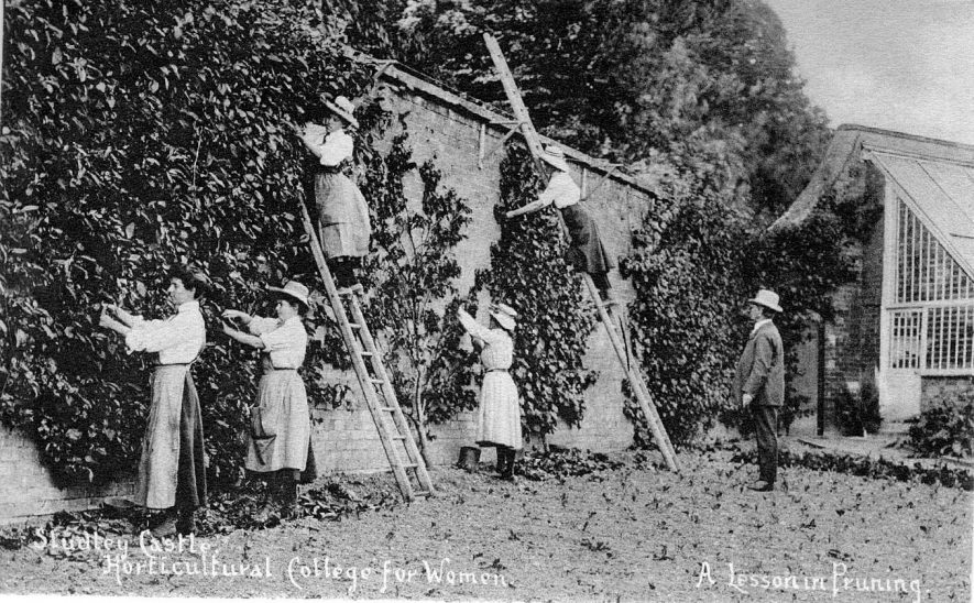 Studley Castle Horticultural College for Women.  Wall with creeper. Tutor giving a lesson in pruning to students.  1910 |  IMAGE LOCATION: (Warwickshire County Record Office)