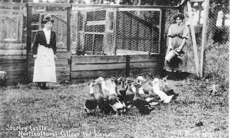Studley Castle Horticultural College for women.  Two students in duck pen with ducks.  1910s    IMAGE LOCATION: (Warwickshire County Record Office)