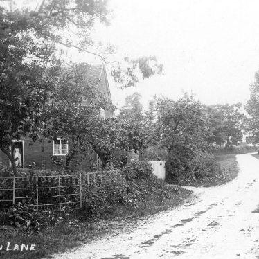 Tanworth in Arden.  Danzey Green Lane