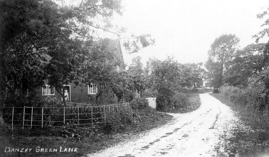 Cottage in Danzey Green Lane, Tanworth-in-Arden.  1910s |  IMAGE LOCATION: (Warwickshire County Record Office)