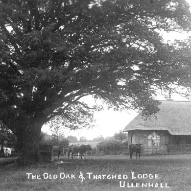Ullenhall.  Old oak and thatched lodge