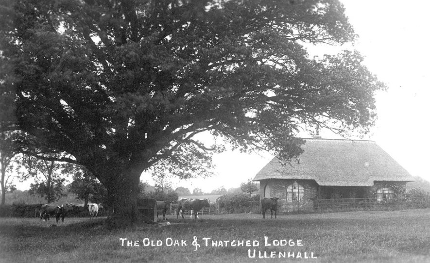 The old oak and thatched lodge at Ullenhall.  1910s |  IMAGE LOCATION: (Warwickshire County Record Office)