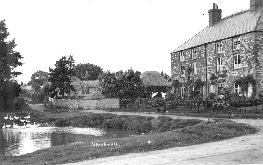 Pond with geese, semi-detached houses, cottages and out-buildings, Blackwell.  1924 |  IMAGE LOCATION: (Warwickshire County Record Office)