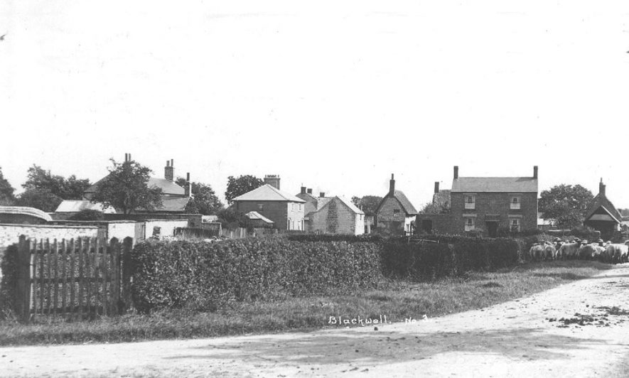 Cottages and flock of sheep, Blackwell.  1920s |  IMAGE LOCATION: (Warwickshire County Record Office)