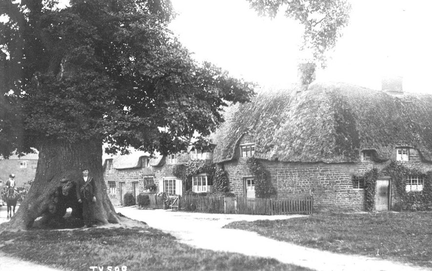 Stone cottages with thatch, horse and trap driven by lady, man by tree, Tysoe.  1910s |  IMAGE LOCATION: (Warwickshire County Record Office)