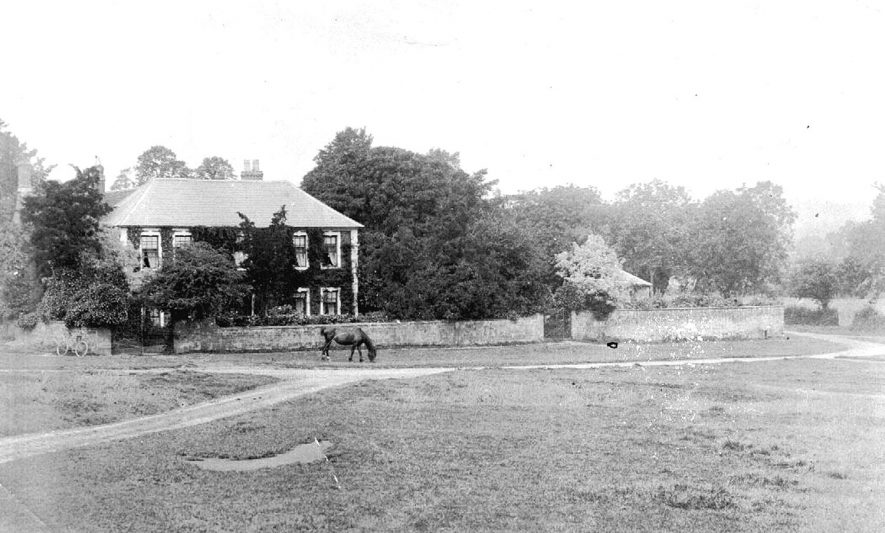 Horse grazing on the green outside the rectory at Warmington.  1900s |  IMAGE LOCATION: (Warwickshire County Record Office)