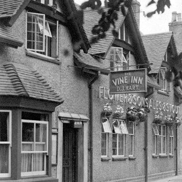 Warwick.  Vine Inn