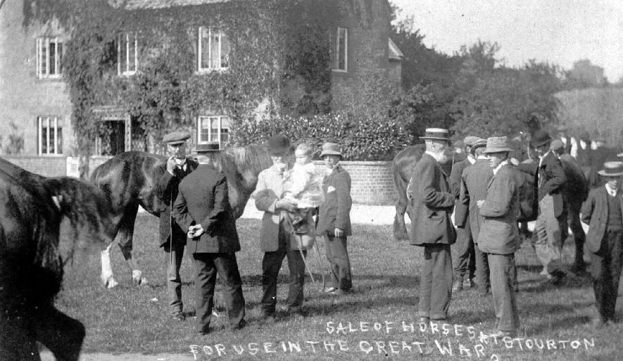 Sale of horses for use in the Great War, held at Stourton.  1914 |  IMAGE LOCATION: (Warwickshire County Record Office)