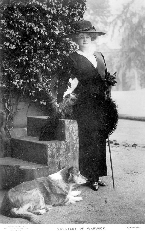 The Countess of Warwick posing with three dogs.  1910s |  IMAGE LOCATION: (Warwickshire County Record Office)