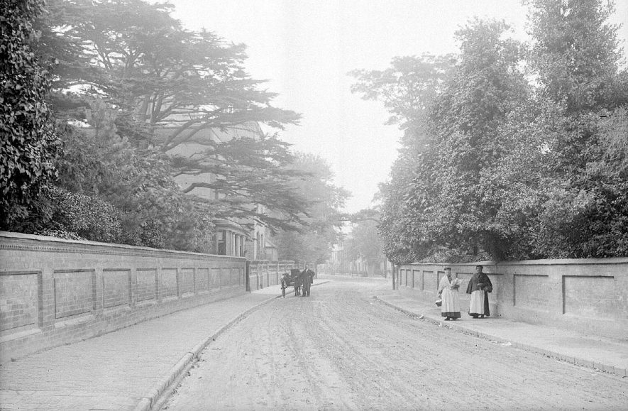 View of Attleborough Hall from the road with two ladies standing and a pony and trap.  Large cedar tree on the left.  1900s |  IMAGE LOCATION: (Warwickshire County Record Office)