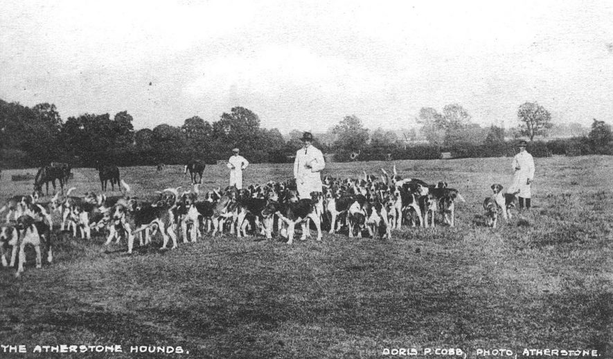 Pack of hounds in meadow and three men in overalls, with horses grazing, Atherstone.  1910s |  IMAGE LOCATION: (Warwickshire County Record Office)