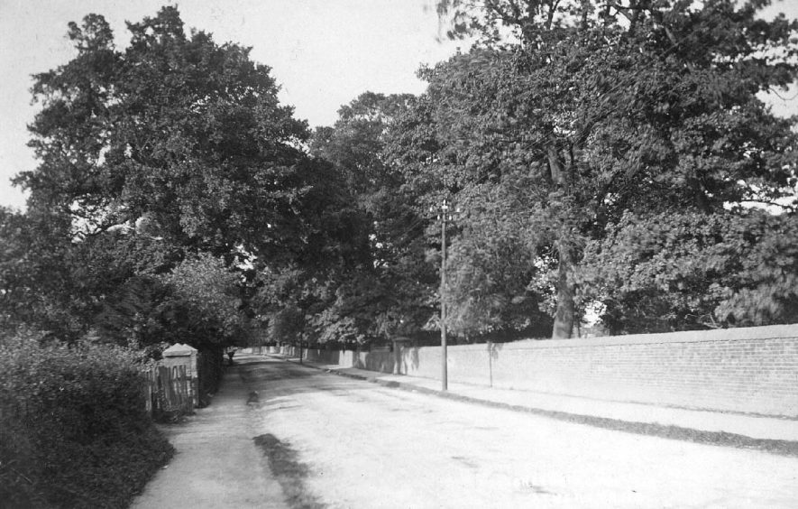 Sheepy Road, Atherstone, with the cemetery on the left.  1900s |  IMAGE LOCATION: (Warwickshire County Record Office)