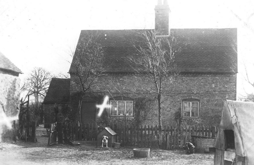 Country cottage with terrier dog in kennel, Atherstone.  1900s |  IMAGE LOCATION: (Warwickshire County Record Office)