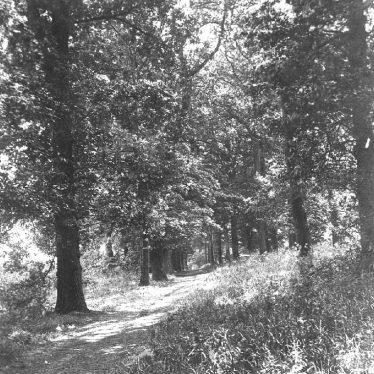Atherstone.  Grove Walk
