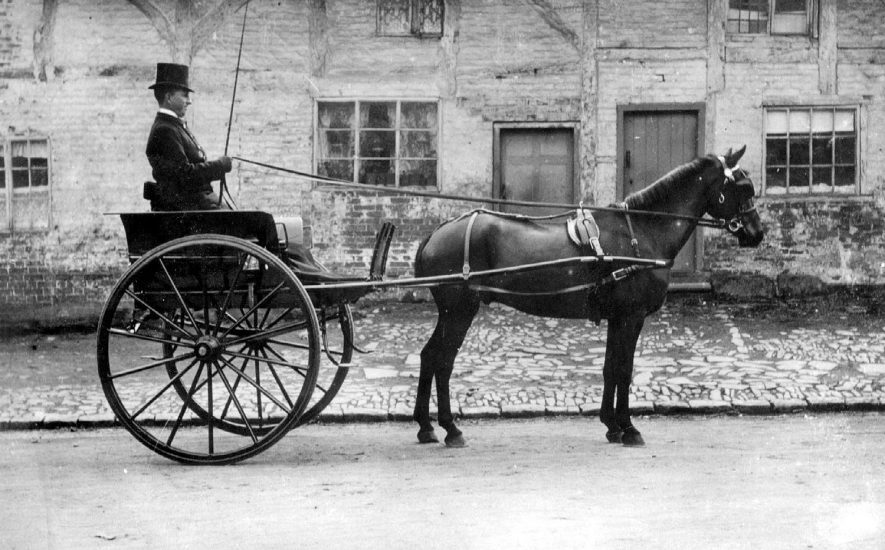 Pony and trap (Chris and Dudley) at Bulkington, in the 1890s |  IMAGE LOCATION: (Warwickshire County Record Office)