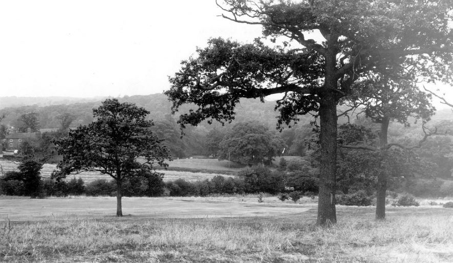 Bluebell wood from the golf course at Atherstone.  1960s |  IMAGE LOCATION: (Warwickshire County Record Office)
