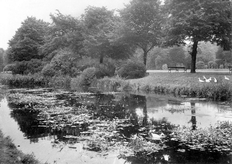Riversley Park, Nuneaton.  1950s |  IMAGE LOCATION: (Warwickshire County Record Office)