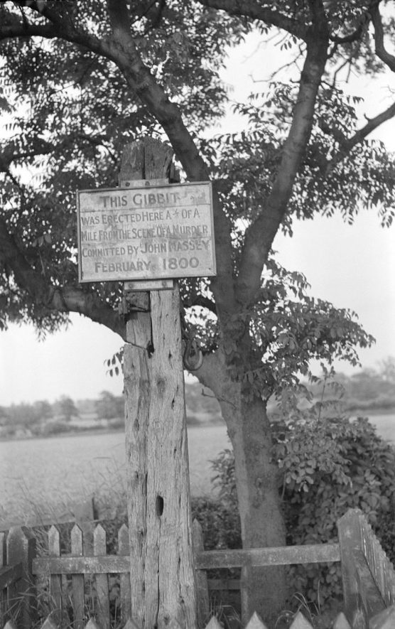 View of the Gibbet Post in a lane near Twycross.  The inscription reads: ' The gibbet was erected here a 1/2 of a mile from the scene of a murder committed by John Massey, February 1800'.  1951 |  IMAGE LOCATION: (Warwickshire County Record Office)