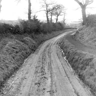 Galley Common.  Lane with road works notice