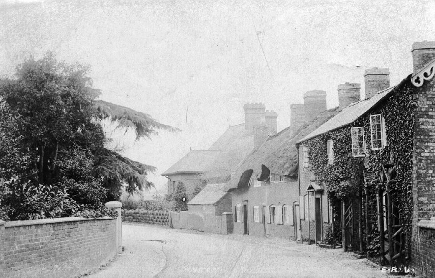 Street with a row of cottages in Ansty.  1910s |  IMAGE LOCATION: (Warwickshire County Record Office)
