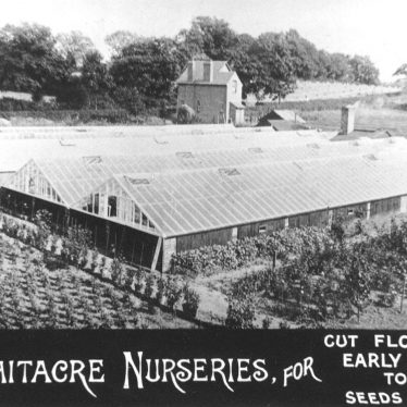 Nether Whitacre.  Whitacre Nurseries