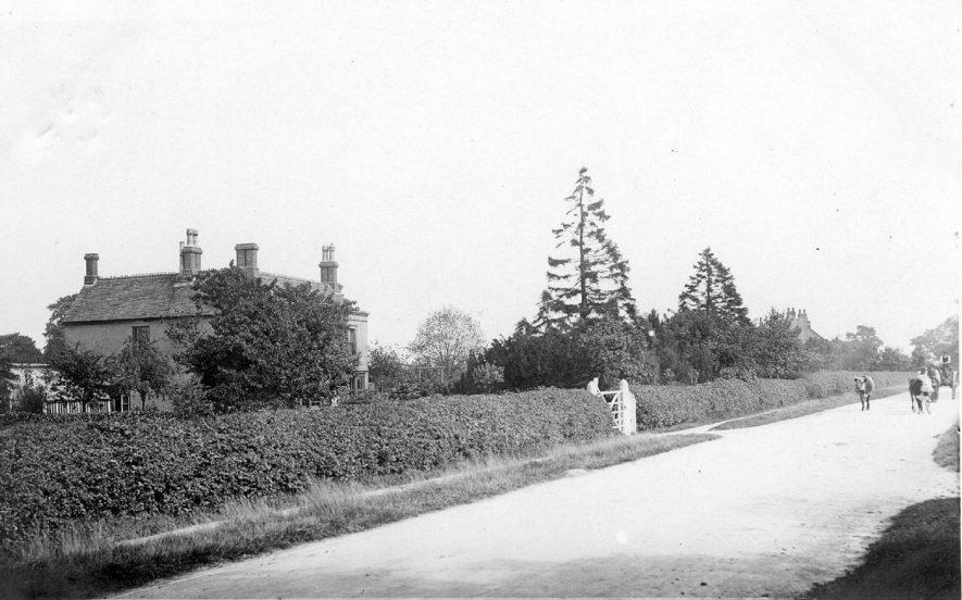 Hinckley Road, Nuneaton looking towards Hinckley.  1900s |  IMAGE LOCATION: (Warwickshire County Record Office)