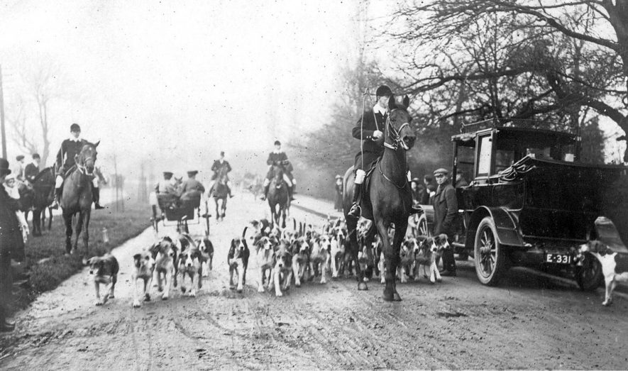 Atherstone Hunt meet at The Briars, Nuneaton, with hunters on horseback and hounds.  Motor car. December, 1907 |  IMAGE LOCATION: (Warwickshire County Record Office)