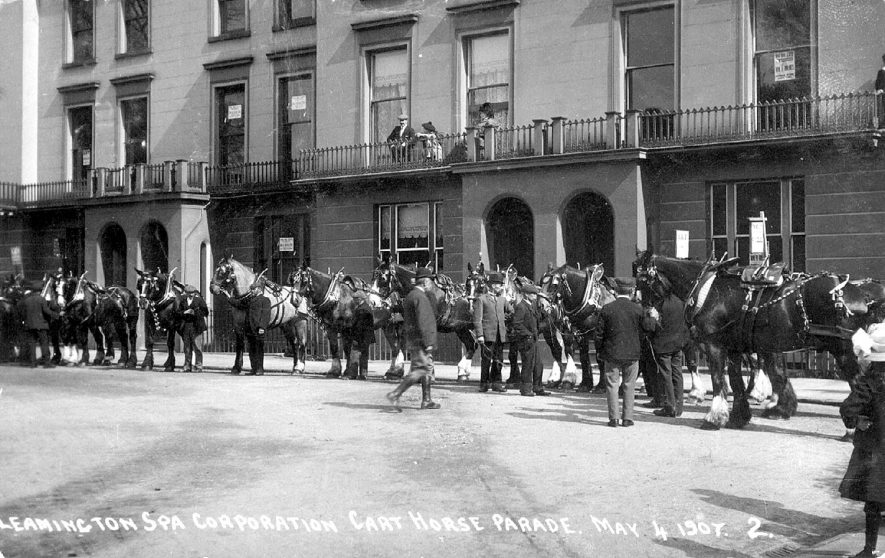 Cart horse parade in Hamilton Terrace, Leamington Spa.  1907    IMAGE LOCATION: (Warwickshire Museums. Photographic Collections.)
