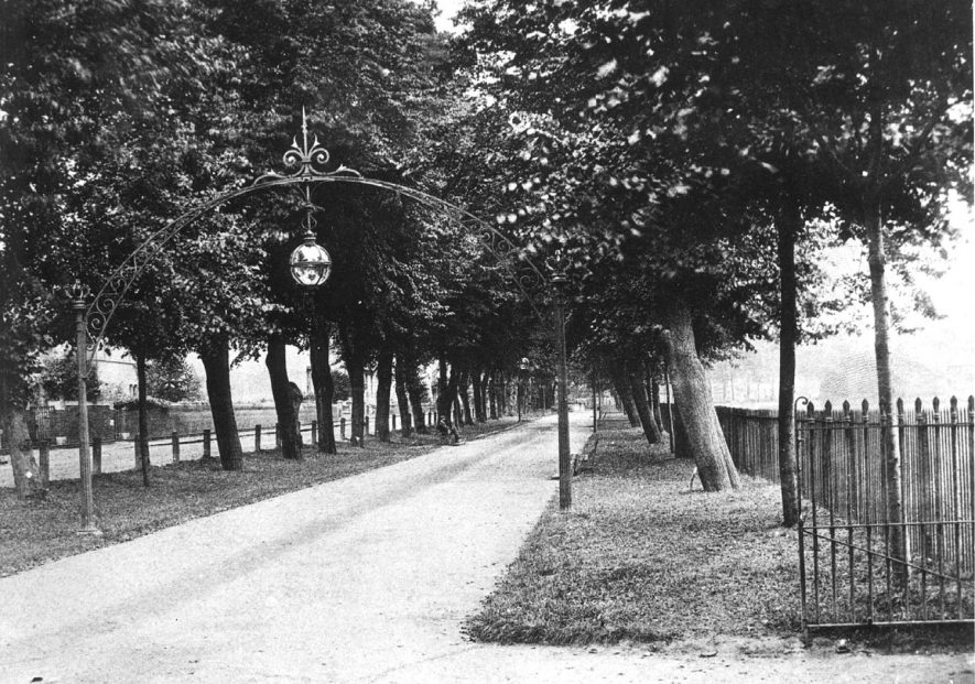Tree lined avenue known as Linden Avenue which is part of the Pump Room gardens, Leamington Spa.  1930s |  IMAGE LOCATION: (Warwickshire Museums. Photographic Collections.)