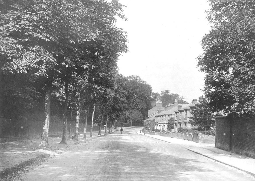 Tachbrook Road looking north, Leamington Spa.  1900s |  IMAGE LOCATION: (Warwickshire Museums. Photographic Collections.)