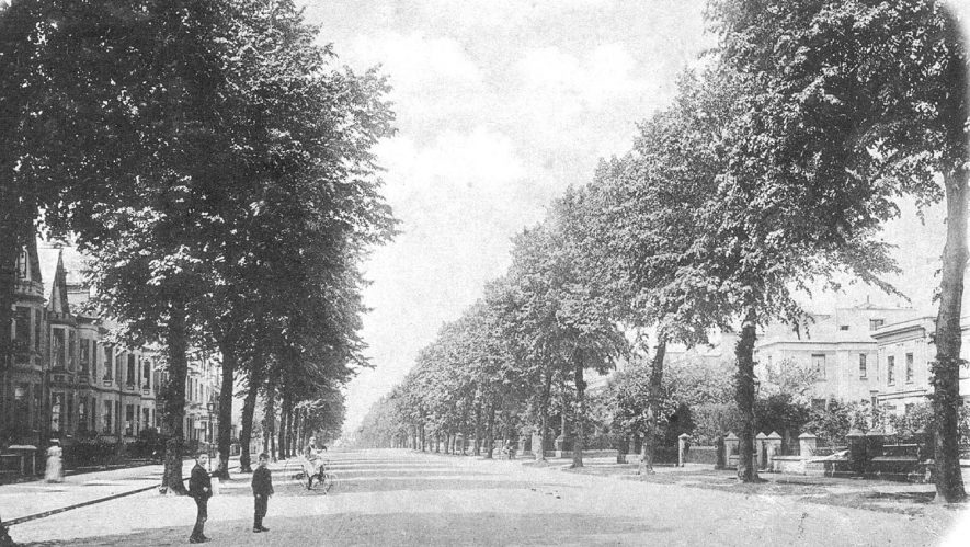 View looking down Beauchamp Avenue, Leamington Spa.  1900s |  IMAGE LOCATION: (Warwickshire County Record Office)