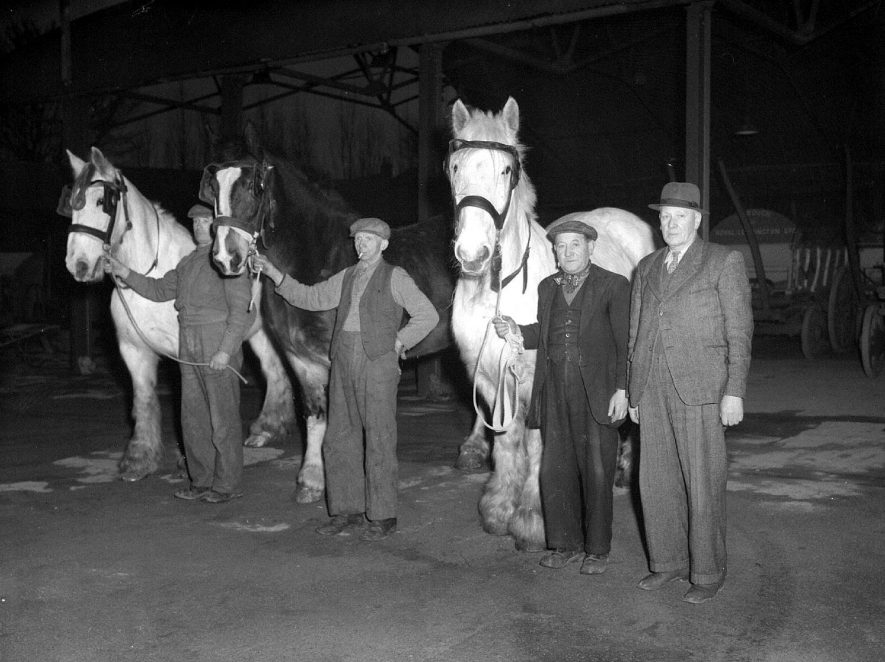 Corporation horses with Mr. Rouch?  1951 |  IMAGE LOCATION: (Warwickshire County Record Office) PEOPLE IN PHOTO: Rouch as a surname