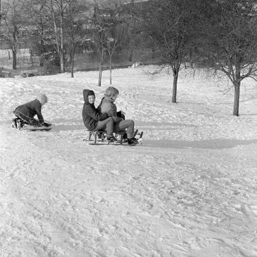 Nuneaton.  Tobogganing in George Eliot gardens