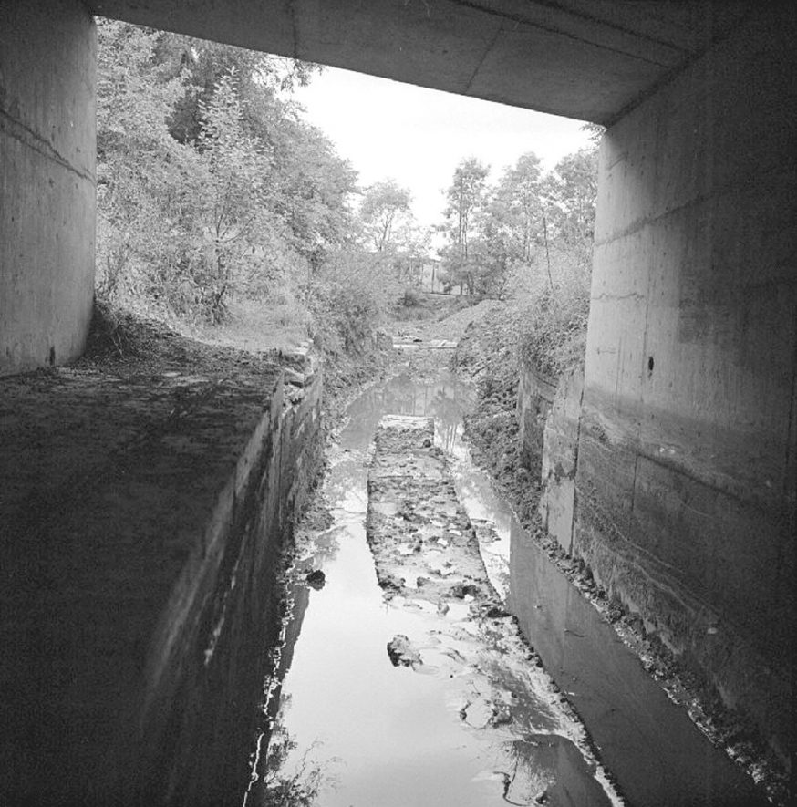 View under the road bridge in Griff Hollows  looking towards Bermuda,  at the time when the canal was being filled in and pipes laid to take water from nearby land.  Photograph taken 19 August 1979 |  IMAGE LOCATION: (Warwickshire County Record Office)