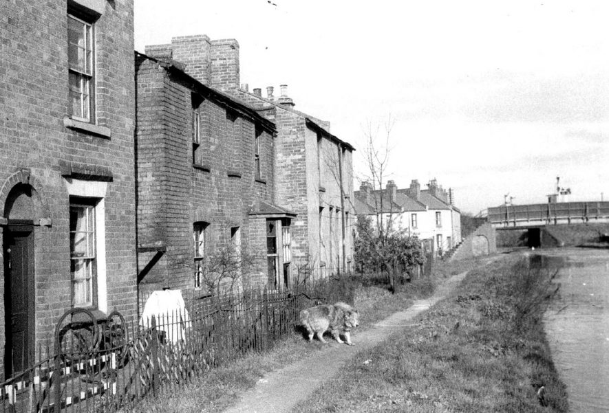 Housing beside the Grand Union Canal.  1957 |  IMAGE LOCATION: (Leamington Library)