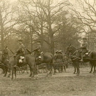 Leamington Spa.  Artillery horses