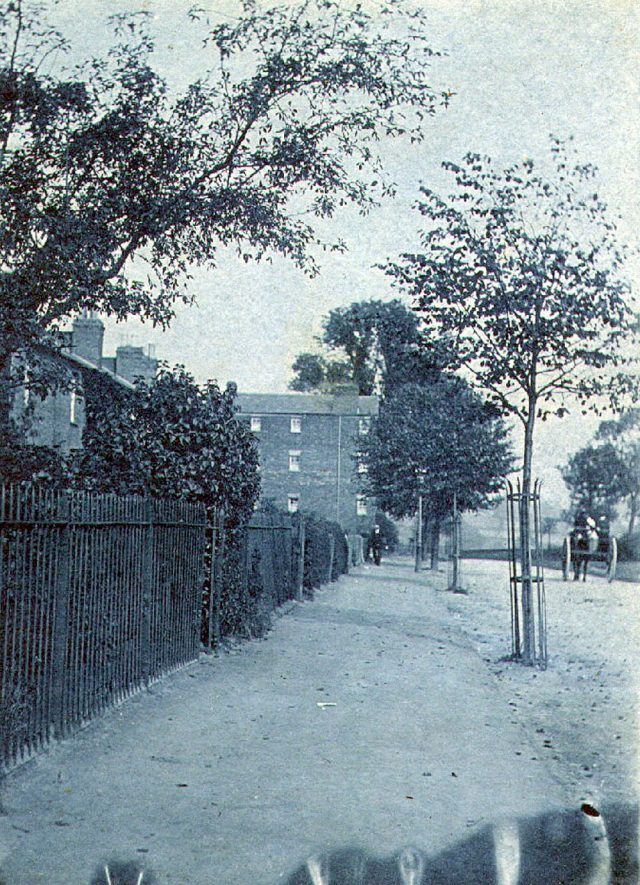 Clifton Road, Rugby.  House in background may have been lodging house for workers on building of London to Birmingham railway line.  Demolished in 1950.  Cast iron tree guards.  1900s |  IMAGE LOCATION: (Rugby Library)
