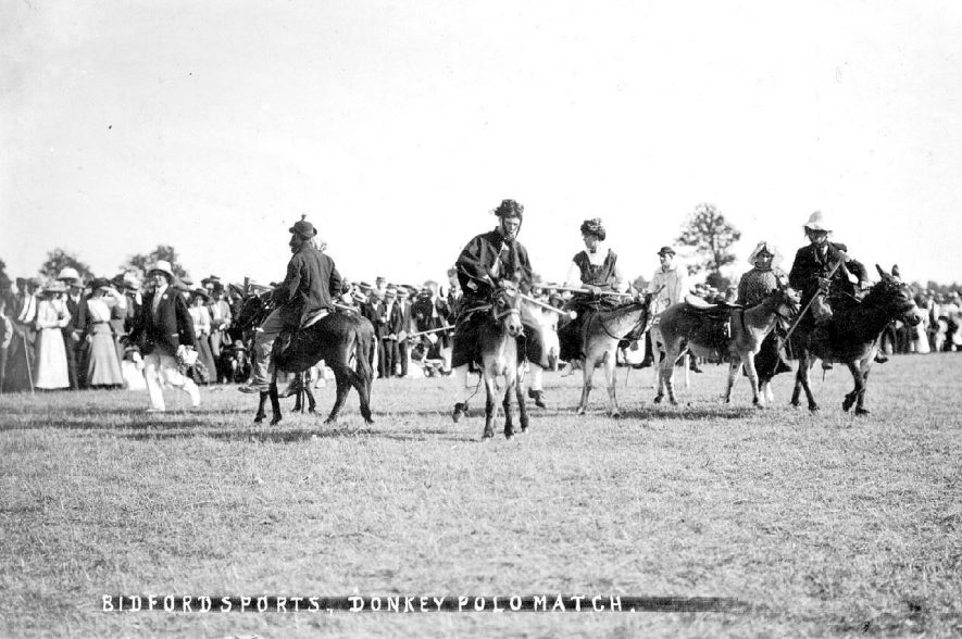 Donkey polo match at Bidford Sports Day.  1911 |  IMAGE LOCATION: (Warwickshire County Record Office)