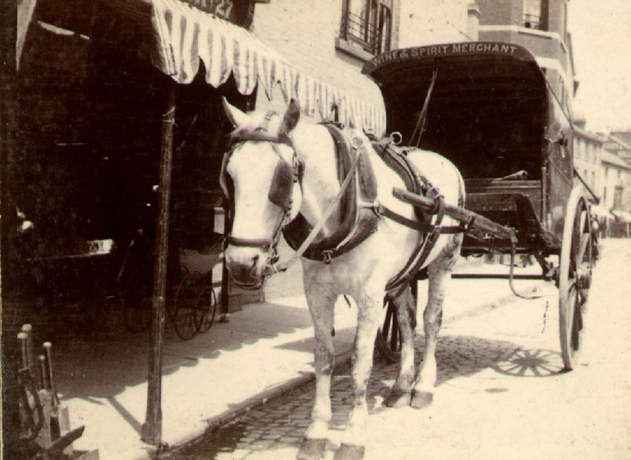 A horse and trap in Sheep Street, Rugby.  1905 |  IMAGE LOCATION: (Rugby Library)