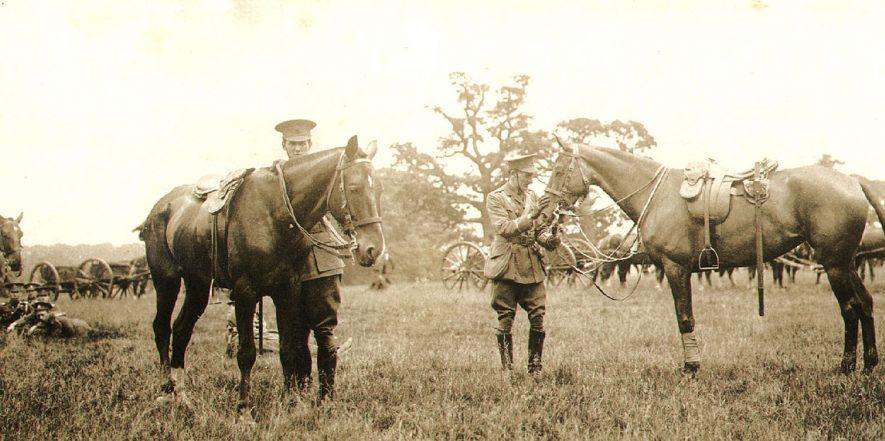 Two officers from 4th South Midland (Howitzer) Battery at Coombe Abbey.  1913 |  IMAGE LOCATION: (Rugby Library) PEOPLE IN PHOTO: Hayes, Mr, Hayes as a surname, Field, Mr M G, Field as a surname