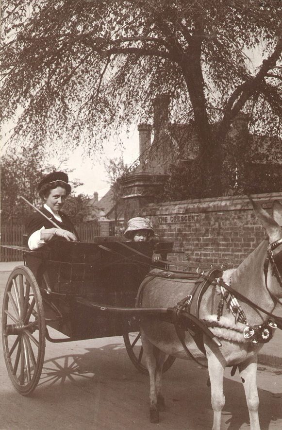 A lady in a donkey cart in Horton Crescent, Rugby.  1912 |  IMAGE LOCATION: (Rugby Library)