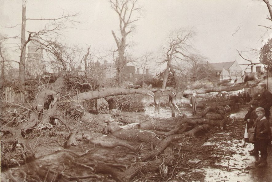 Scene in Barby Road, Rugby after the gale of Sunday, March 24th 1895. |  IMAGE LOCATION: (Rugby Library)